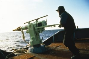 Whaling Mark Votier