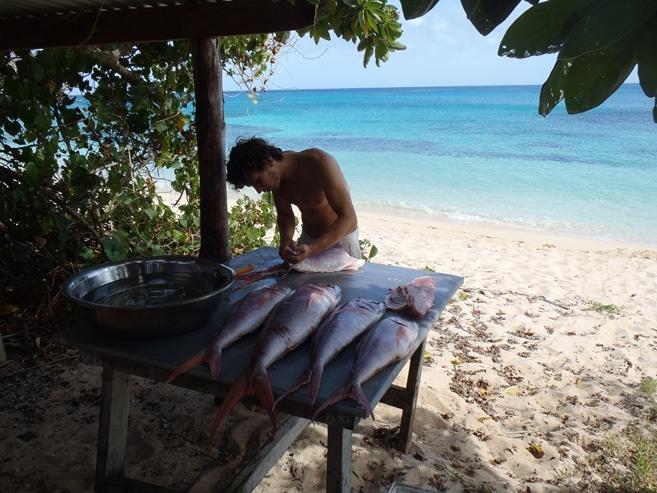 Koch auf Tonga beim Essen zubereiten