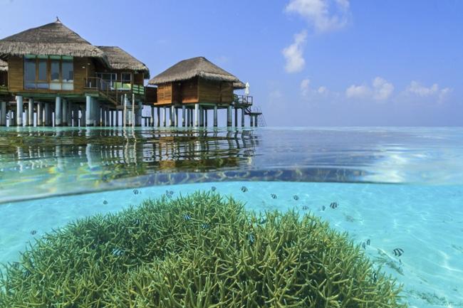 Wasservilla Lagune Maafushivaru