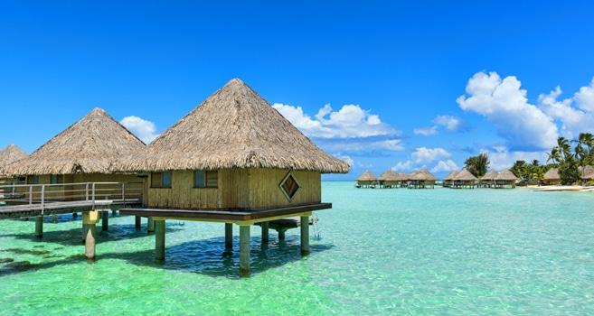tauchen vor bora bora urlaub in franz sisch polynesien. Black Bedroom Furniture Sets. Home Design Ideas
