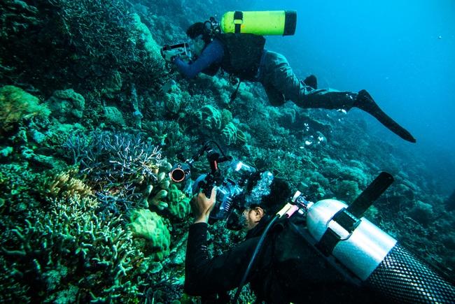 Unterwasserfotografie Anfängertipps