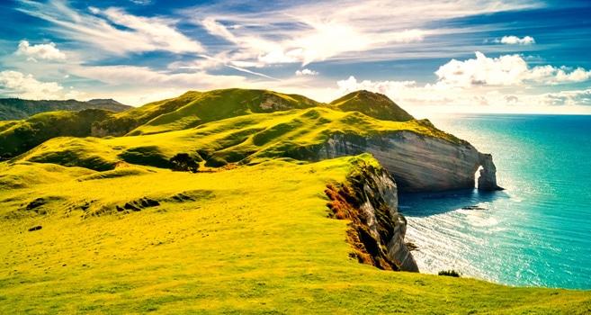 Tauchen in Irland: Von versunkenen Schiffen und einer atemberaubenden Flora und Fauna